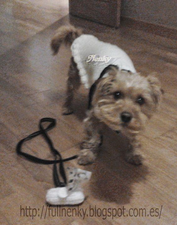 Hola chic@s ,hoy les presento a Boby,         Como modelo algo inquieto,jajaja,pero... ¡un perrito muy especial,así como este encargo que...
