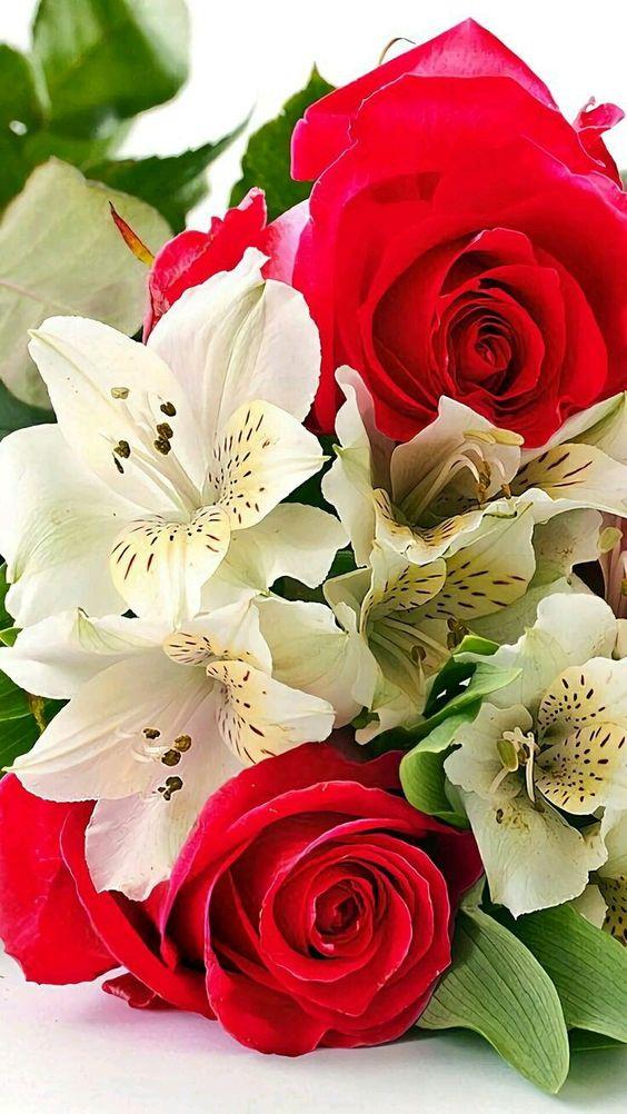 Oh Quelles Jolies Fleurs Page 215 Supertoinette
