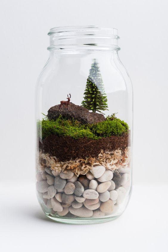 Süß: Terrarium mit Berglandschaft.