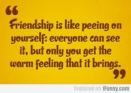 Friendship Is Like Peeing Yourself...