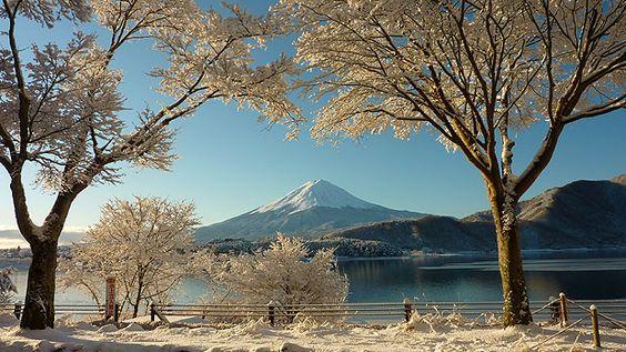 A wintry scene at Mount Fuji, Japan      //  Chris Moore