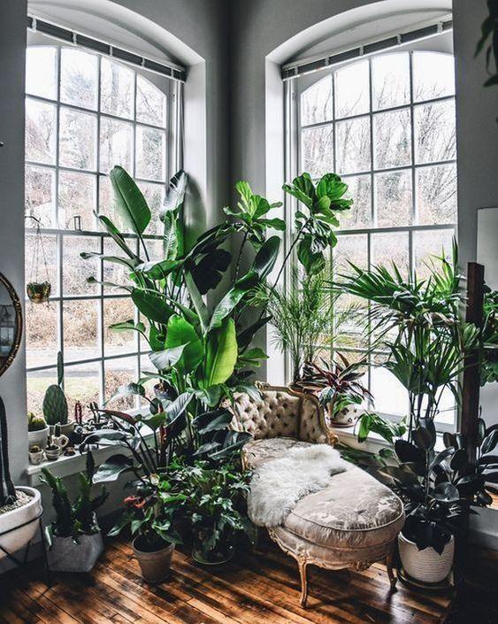 Urban jungle no cantinho de leitura. Confira a imagem no link! (Foto: Reprodução) #decor #decoração #decoration #decoración #reading #leitura #urbanjungle #casavogue