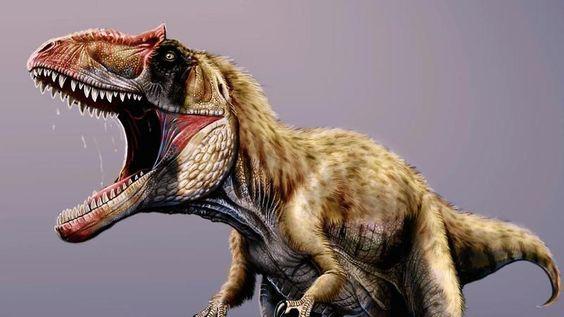 Einfachere Geschlechtsbestimmung: Schwangerer T.Rex liefert neue Erkenntnisse