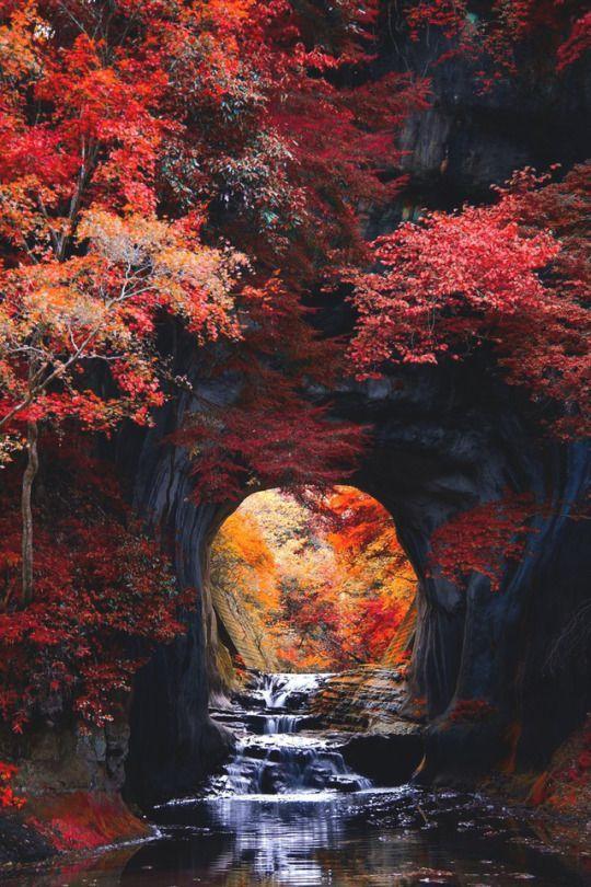 Inspiration Autumn Delight Autumn Scenery Autumn Scenes Scenery