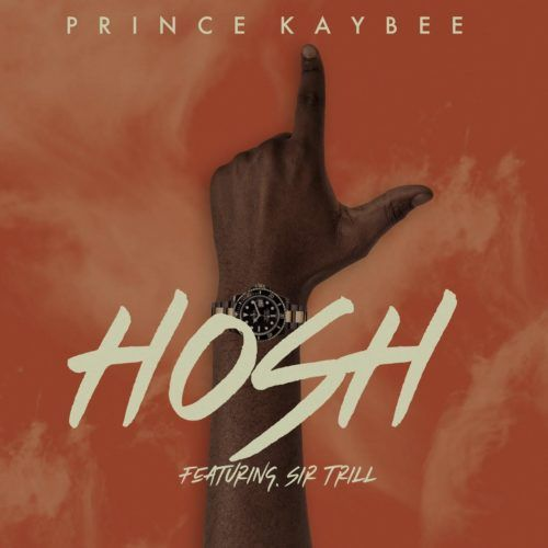 Prince Kaybee Hosh Feat Sir Trill In 2020 African Music Trill Lyrics