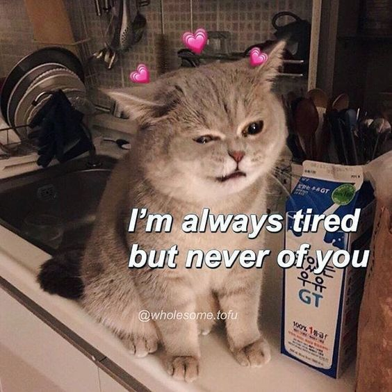 32 I Love You Memes To Share With Your Sweetheart Uplifting Memes Love You Meme Cute Memes