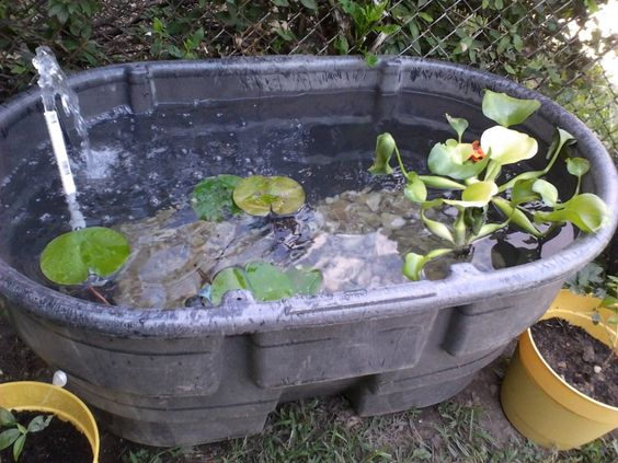 Pretty and small backyard fish pond ideas at decor for Small pond liner