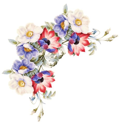 flower_80n.png: