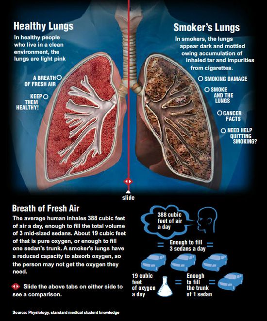 how cigarette smoking damages the heart and lungs You probably know that cigarette smoking causes breathing problems and lung  cancer but did you know it also makes you more likely to have.