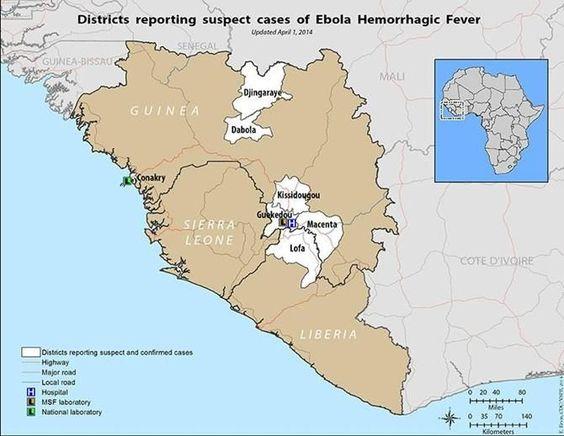 10 фактов про вирус Эбола, которые нужно знать - В мире чудес