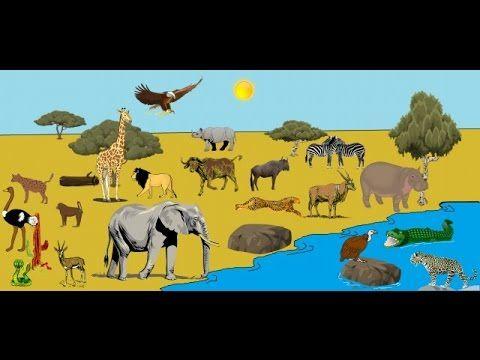 Los Animales De La Sabana Para Niños Animales De Africa Tipos De Animales Animales
