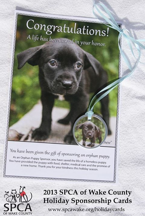 """Looking for a gift for """"someone who has everything?"""" Look no further. Visit the SPCA's Holiday Sponsorship Card store. Sponsor a homeless pet in honor or in memory of a friend or family member. We can send the sponsorship card directly to the recipient or to you. Visit www.spcawake.org/holidaycards"""