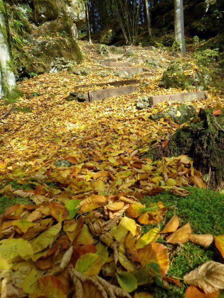 Trail run from Kirchenbirgik into Klumpertal 10/13/2015 - Film and pictures in german language by Thomas Schmidtkonz http://laufspass.com/laufberichte/2015/klumpertal-10-2015.htm #Klumpertal #Bavaria