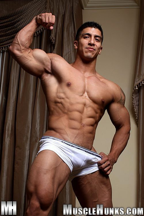 Bodybuilder muscle solo