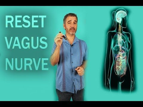 25++ How to reset nervous system trends