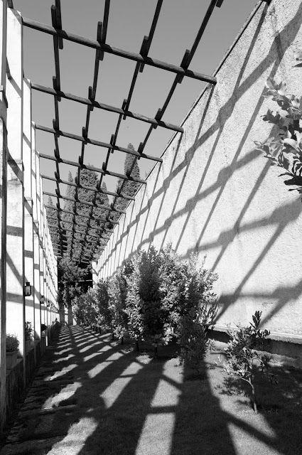 jardin de limoneros en Italia