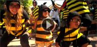 Honeybees are disappearing. Help bring them back.  http://www.helpthehoneybees.com/