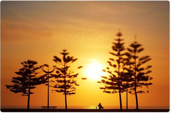 Google Image Result for http://www.aquabumps.com/wp-content/uploads/2012/10/5O0A3012-19-10-2012-sunrise-maroubra-gold.jpg