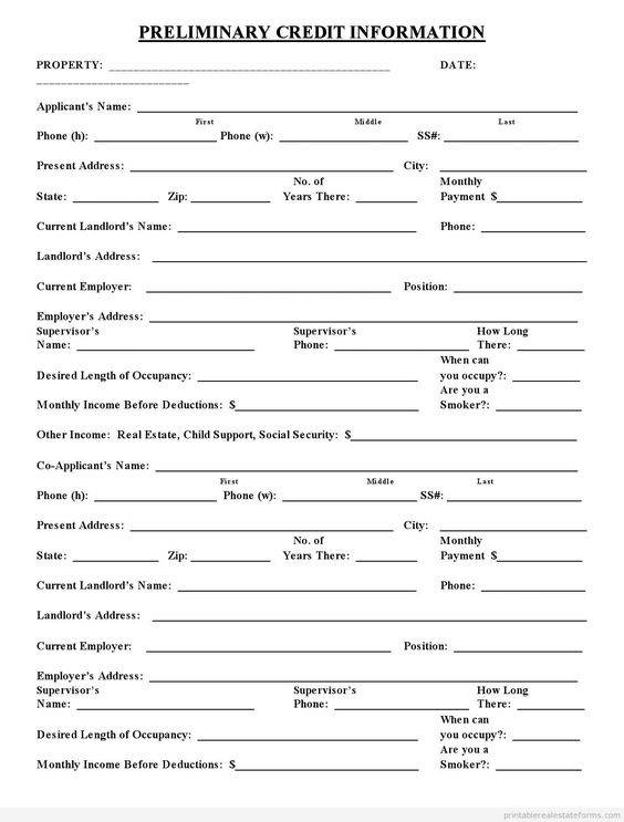 Sample Printable preliminary credit application 3 Form Printable - application form word template