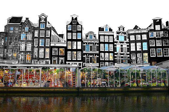 bloemenmarkt (floating flower market) on the Singel canal in Amsterdam: