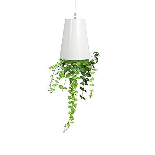 Zerodis Sky Planter Hangend Umgekehrt Blumentopf Pflanztopf Blumenampeln Krauterpflanzgefasse Blumentopf
