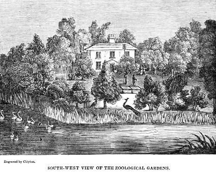 Graham O'Reilly Retweeted Ireland Culture ‏@WalkingIrishman  21 Dec 2014 Zoological Gardens Dublin in the 1830's.