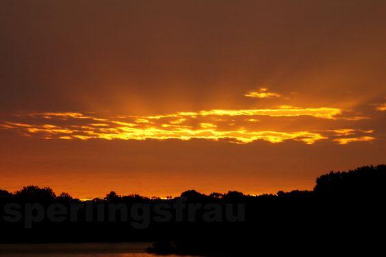 AKR ZeitRaub - Here comes the sun 2  - Fotografie  von sperlingsfrau auf DaWanda.com