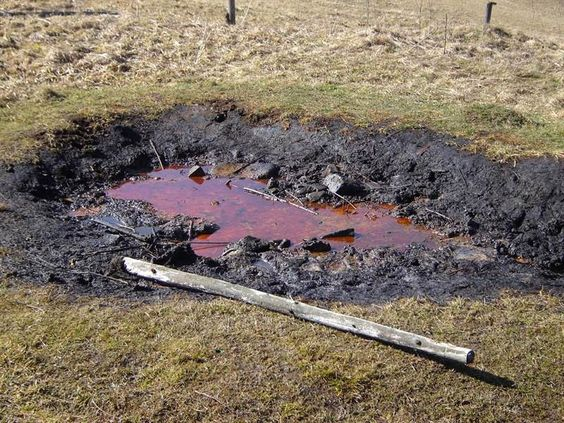 Korňanský ropný prameň 1 - Branork
