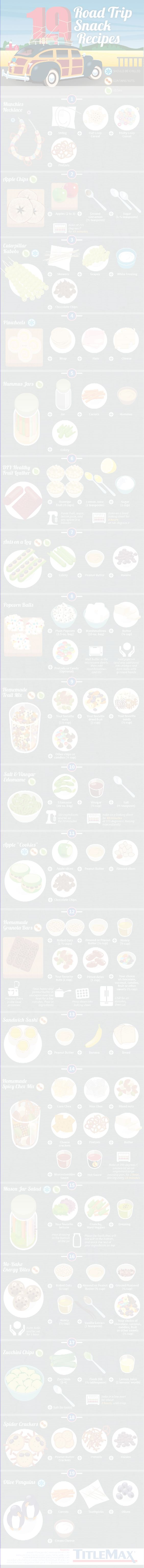 19 Road Trip Snack Recipes Infographic
