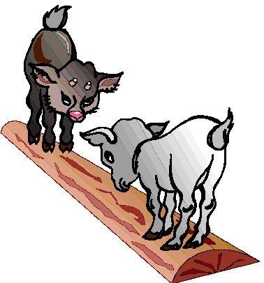 goats on a log