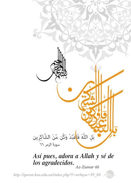 Pin By Sutan Hendy Alamsyah On El Arte Islamico Es Hermoso الفن الإسلامي Islamic Art Art Arabic Books