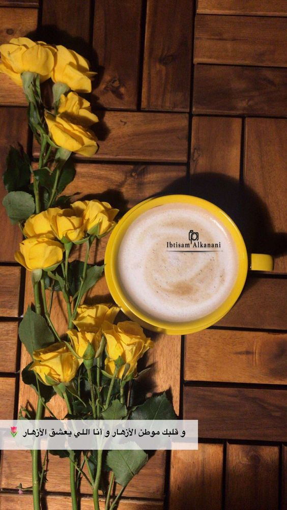 القهوه تصويري سناب