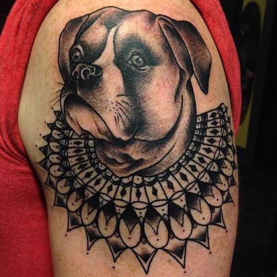 this collar is amazing.