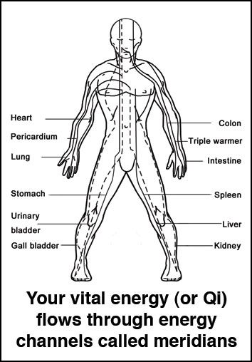 black and white anatomical diagram of Qi meridian energy channels