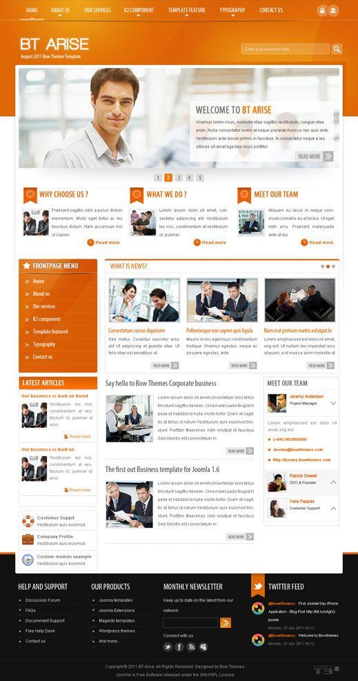 professional website templates