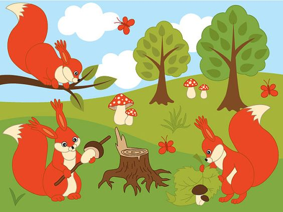 Woodland Squirrels Clipart  Digital Vector Squirrel by TanitaArt