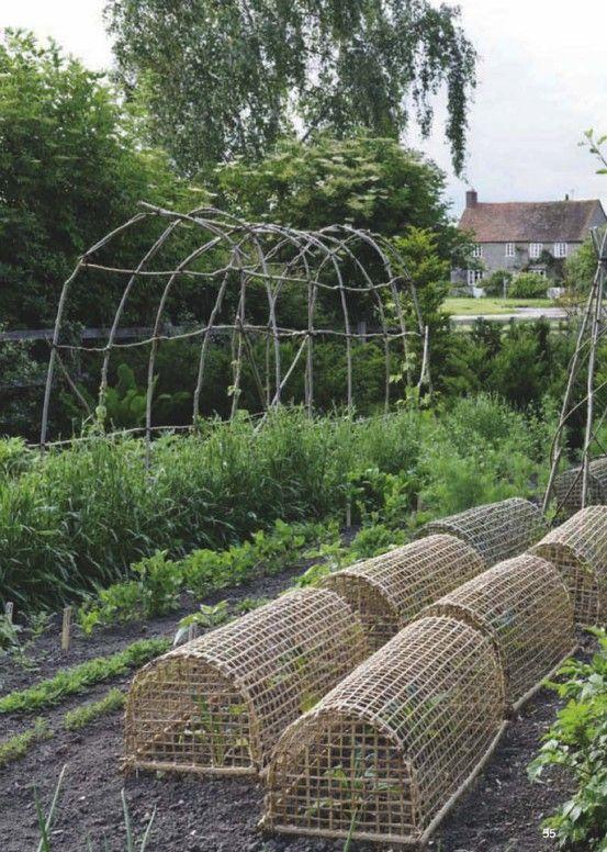 English kitchen garden  ..  hazel wood tunnel plant protectors