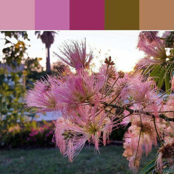 《Pink Fluff Palette