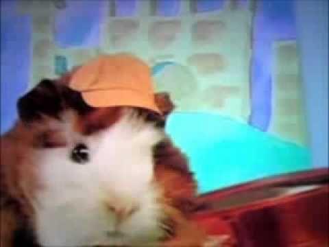 I Call The Wonderpets Youtube Wonder Pets Inside Jokes Humor
