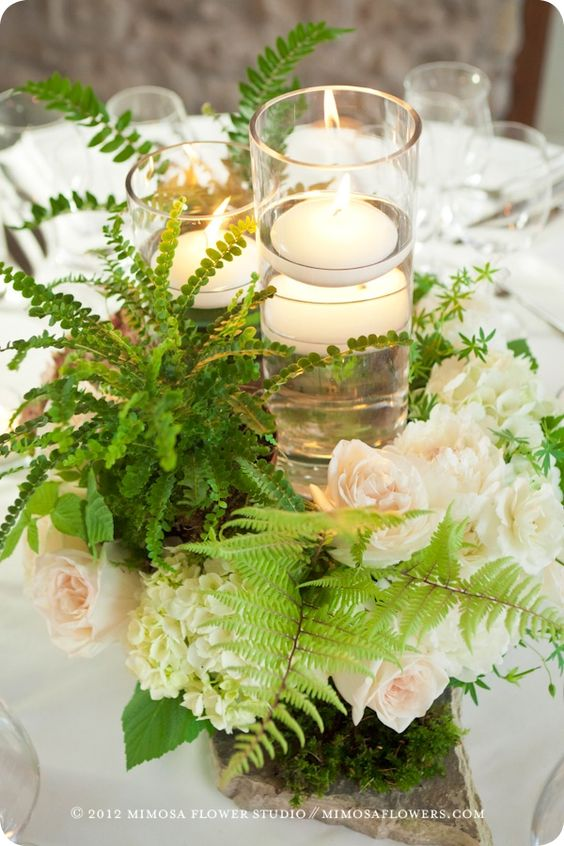 ferns and roses: