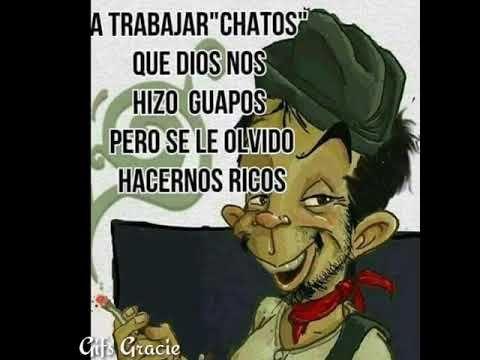Gifs Para Whatsapp Buenos Dias A Trabajar Chatos Que Dios Nos Hizo Guapos Per In 2020 Good Morning Friends Quotes Funny Spanish Memes Spanish Inspirational Quotes