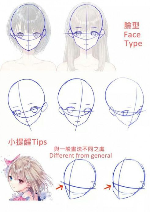 Animedrawing Anime Drawing Head Anime Animedrawing Drawing In 2020 Manga Drawing Tutorials Drawing Heads Anime Drawing Books
