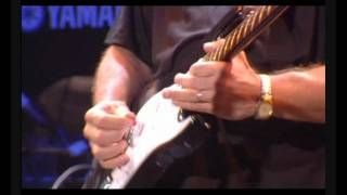 "Joe Walsh - Guitar Solo In Concert ""50 Years Of The Fender Stratocaster"".wmv, via YouTube.:"