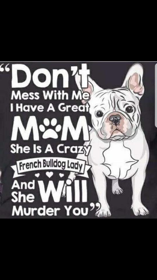 "Pin By Ê¿merikanischen Clarke On ""±ranzosische ""¬ulldogge French Bulldog Quotes French Bulldog Funny Frenchie Mom"