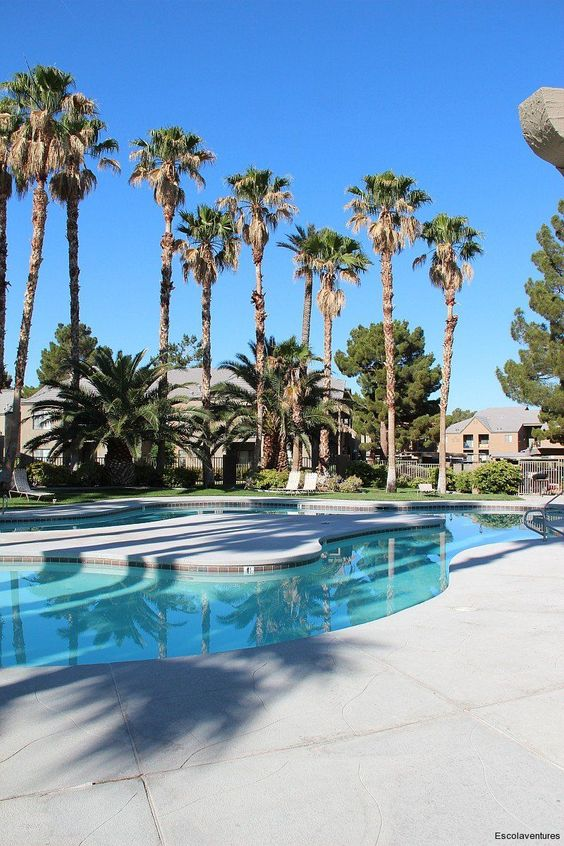 Henderson Pool Area