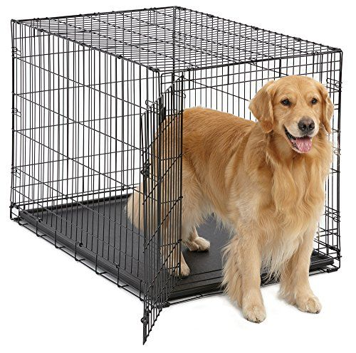 Giant Canine Crate Midwest Icrate Folding Metallic Canine Crate