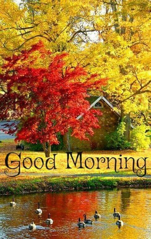 Good Morning Autumn Scenes Autumn Scenery Fall Pictures