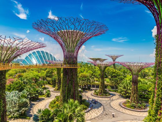 The Ultimate Walking Tour Of Singapore S Gardens By The Bay Singapore Garden Visit Singapore Gardens By The Bay
