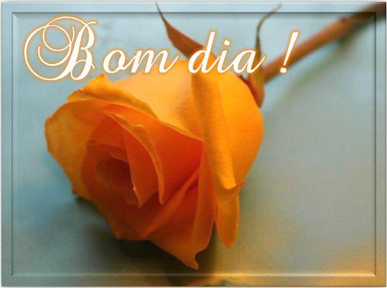 Rosa Solitária Bom Dia!