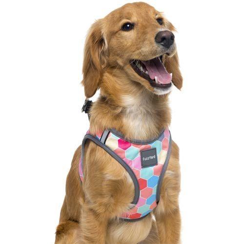 Fuzzyard Step In Dog Harness The Hive In 2020 Dog Harness Dog